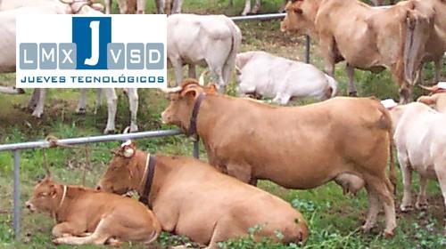 El grupo de acción local canario ADER La Palma ofrece un curso para informatizar la gestión de explotaciones agrarias de la isla