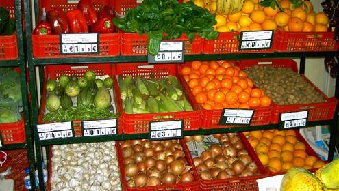 Promueven la gestión de fincas agrícolas informatizadas