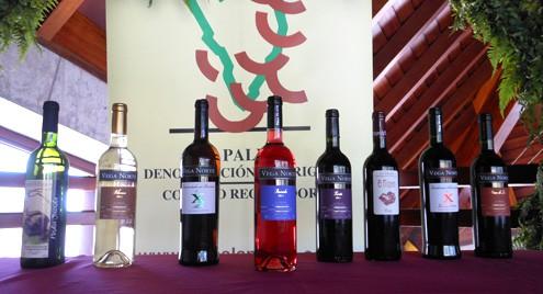 Celebrado el XII Concurso Insular de Vinos con Denominación de Origen «La Palma»
