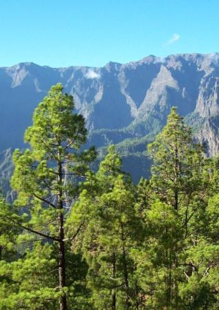 Desarrollo Sostenible. Guía Mover Montañas de buenas prácticas