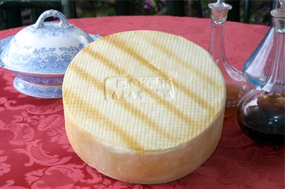 quesoenmesa
