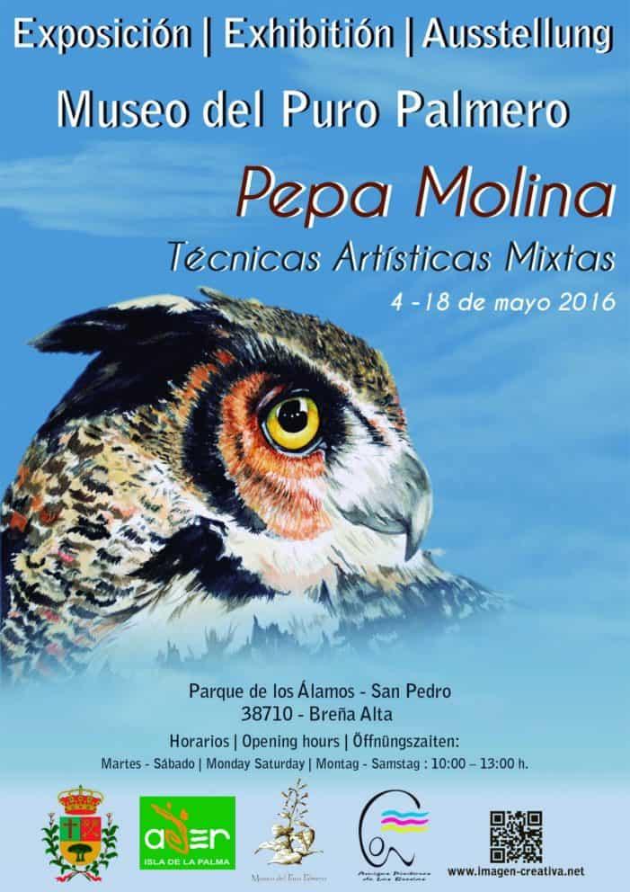 Exposición de muestra pictórica, de técnicas artísticas mixtas de Pepa Molina, en El Museo del Puro Palmero