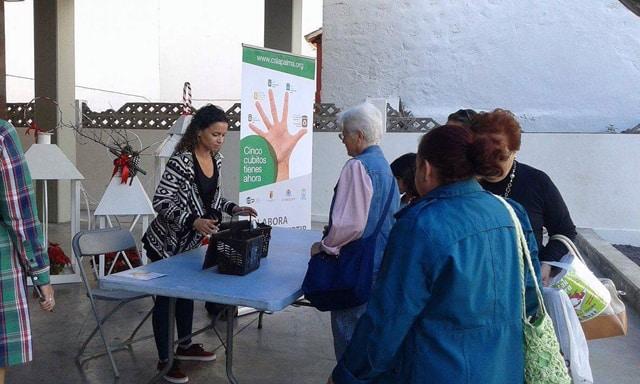 Más de 450 viviendas de Los Llanos de Aridane ya tienen su kit de materia orgánica