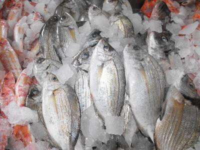 La Palma dispone de 411.320 euros para la puesta en marcha de estrategias de desarrollo local participativo en zonas pesqueras