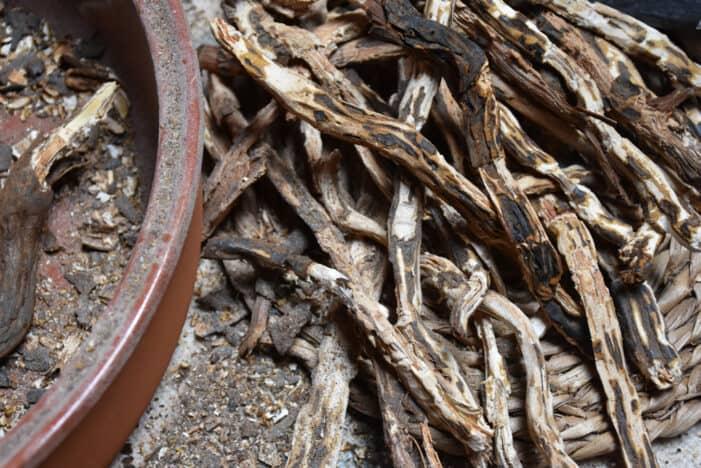 Bollos de raíces de helecho: un alimento para la supervivencia
