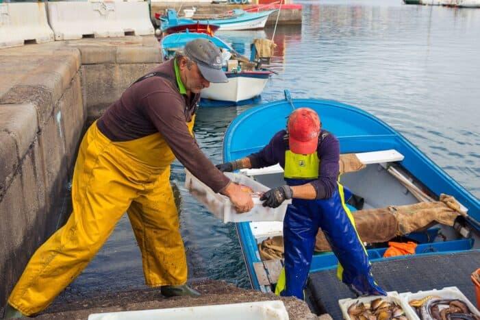 La Cofradía de Las Nieves lanza su pescadería online 'El Muellito'