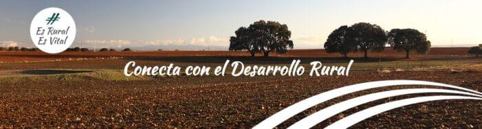 """Jornada de presentación de la publicación """"Del medio urbano al rural: buenas prácticas de emprendimiento de nuevos habitantes"""""""